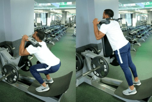 The Benefits of Reverse Hack Squats