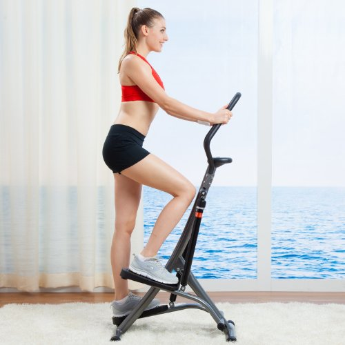 Sunny Health & Fitness Folding Climbing Stepper step climber machines