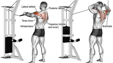 Photo of High Cable Rear Delt Fly – Bigger Shoulders