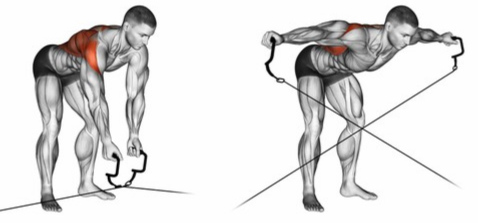 How to Do the Cable Rear Delt Fly