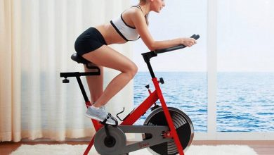 Photo of Sunny SF B1001 Indoor Cycling Bike Review